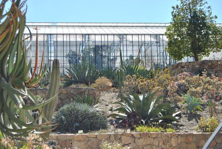 Jardín Botánico del Cactus