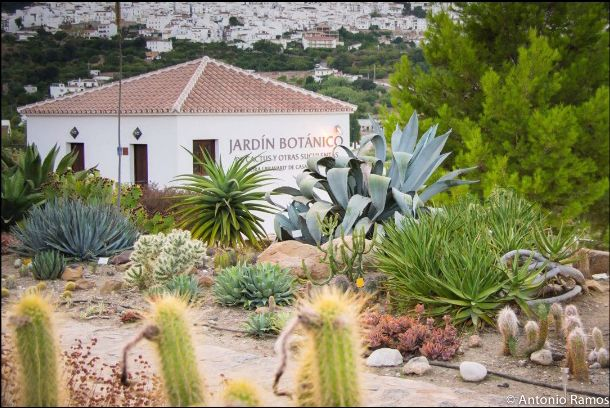 Ecoturismo. La Almazara y el Jardín del Cactus.