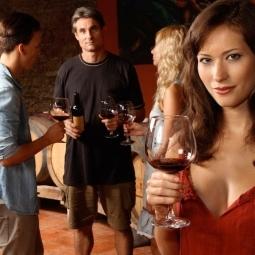 Cata de vinos en Málaga