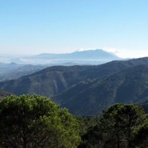 Tolox corazón de la Sierra de las Nieves